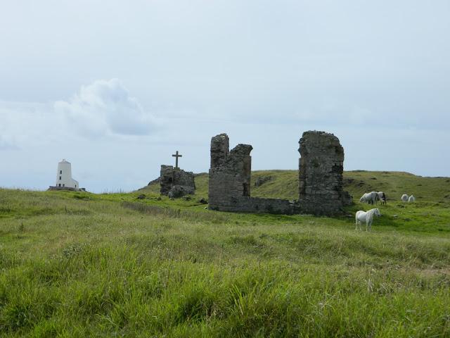 Visitare Llandwyn Island