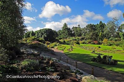 Visitare Giardino Botanico di Edimburgo