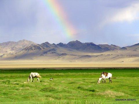 Organizzare un viaggio in Mongolia