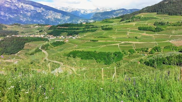 Visitare la Val di Cembra in Trentino