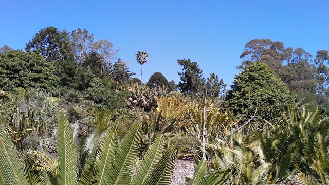 Viaggio in California: Lotusland